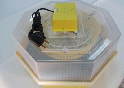 Инкубатор с ръчно завъртане за 60 яйца
