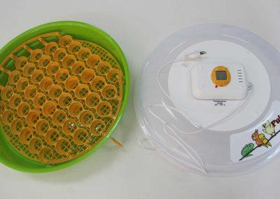 Полуавтоматичен инкубатор за 51/70 яйца за екзотични птици и влечуги