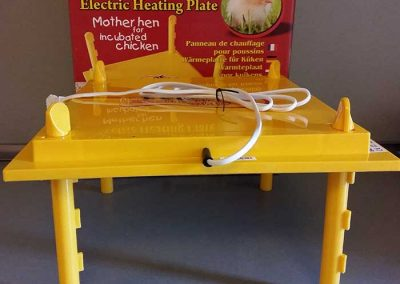 Изкуствена квачка за пилета излюпени с инкубатор