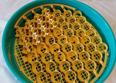 Приставка за яйца от пъдпъдък серия Premium/102 бр.